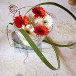 fleurs orange et blanches