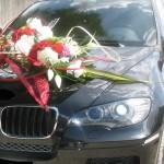 fleur sur voiture