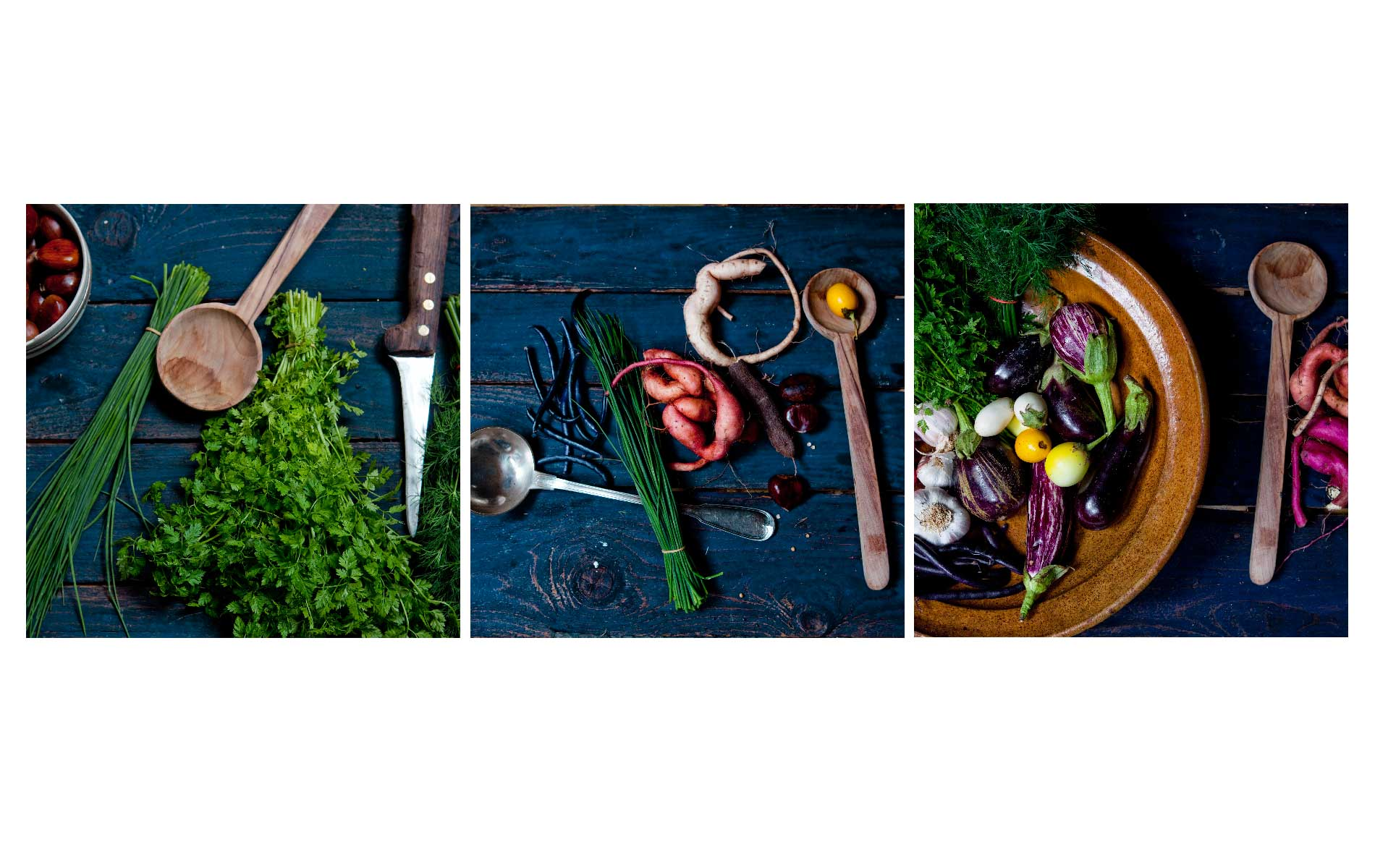 Atelier Végétal